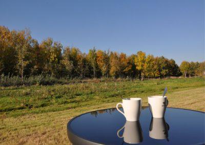 Kaffee mit Blick auf Herbstwald